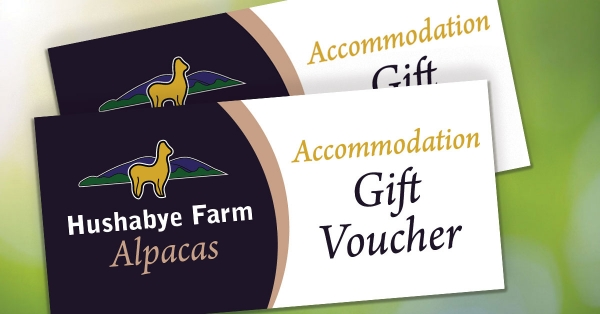 Accommodation Voucher